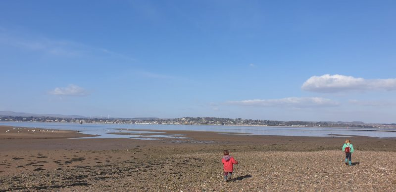 Explorting marshes around TRayport with Taking care of tayport audio tour
