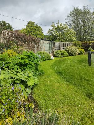 Photo showing paths mown through a lawn