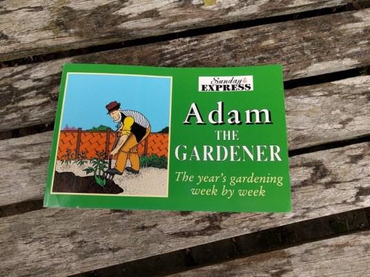 No dig gardening part 1 Adam the gardener