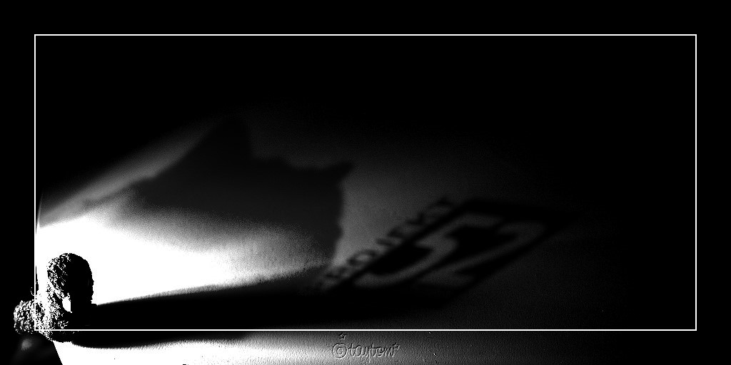 P52-15: Licht und Schatten