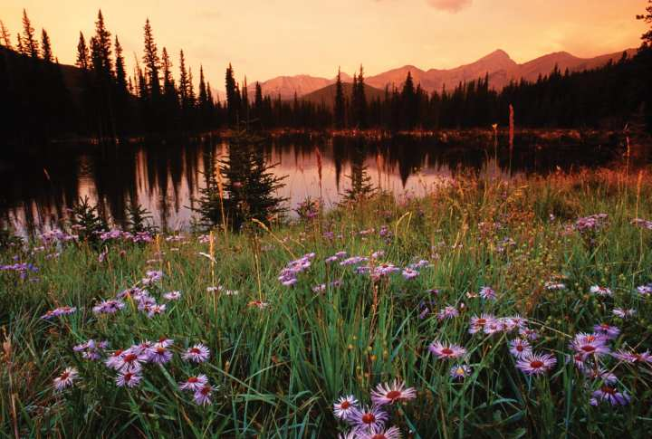 Mountain Sunset –NLP Training typical day