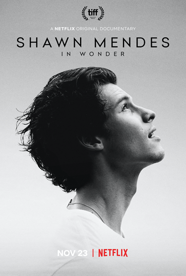 Shawn Mendes partners with Netflix to release In Wonder