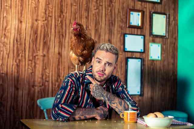 It's Sunshine, chickens and feel-good vibes in Liam Payne's new music video