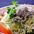 ヂャコの海鮮物語サラダ