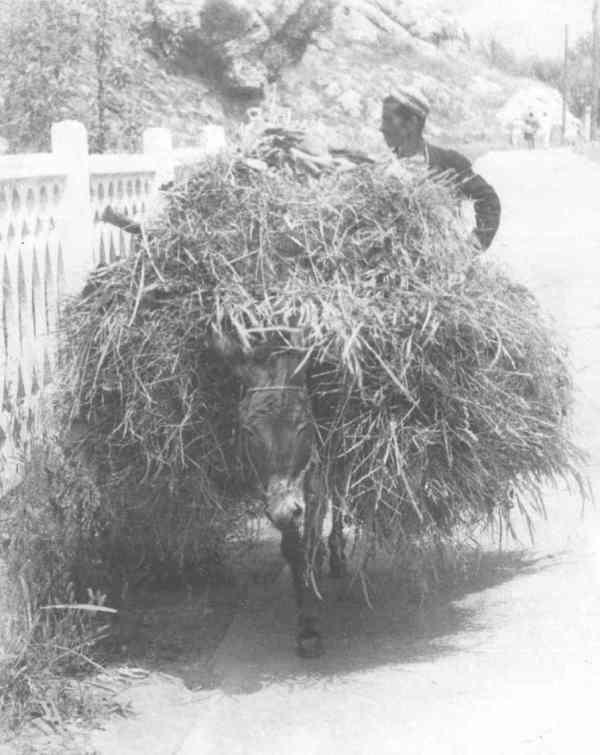 Рис. 3. 1972. Нурек. Казанский вокзал. Первый встречный