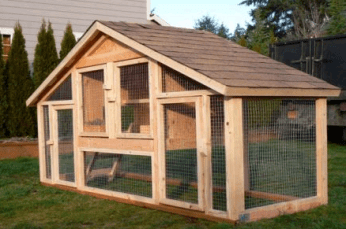 chicken coop22