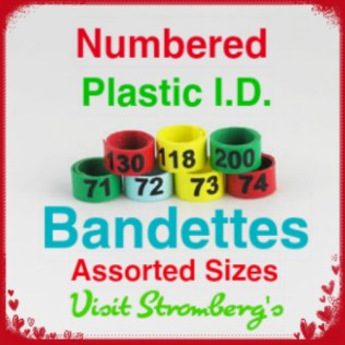 Leg Bands Numbered