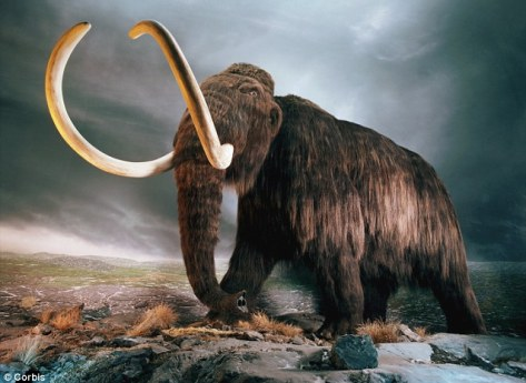 Gone forever: The meteor storm is thought to have caused the mass extinction of megafauna including the woolly mammoth
