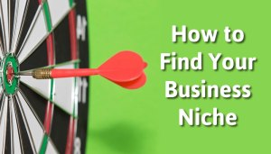 Business niche