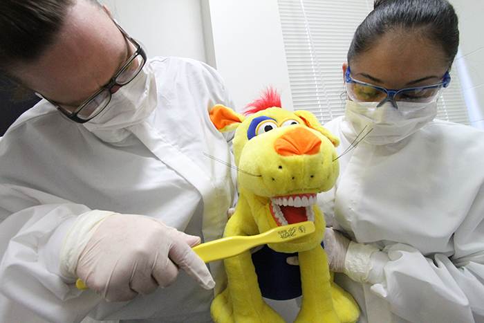 Dental Assisting students brushing a stuffed animals teeth