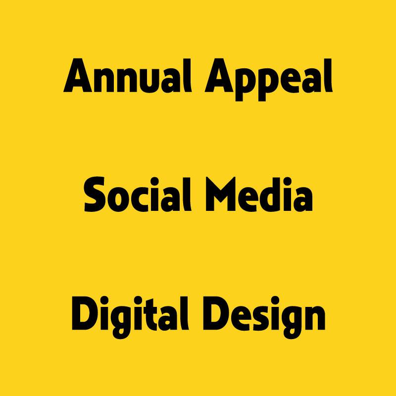 TC Designs, Champions for Children, Graphic Design, Appeal, Publication, tamara chapman