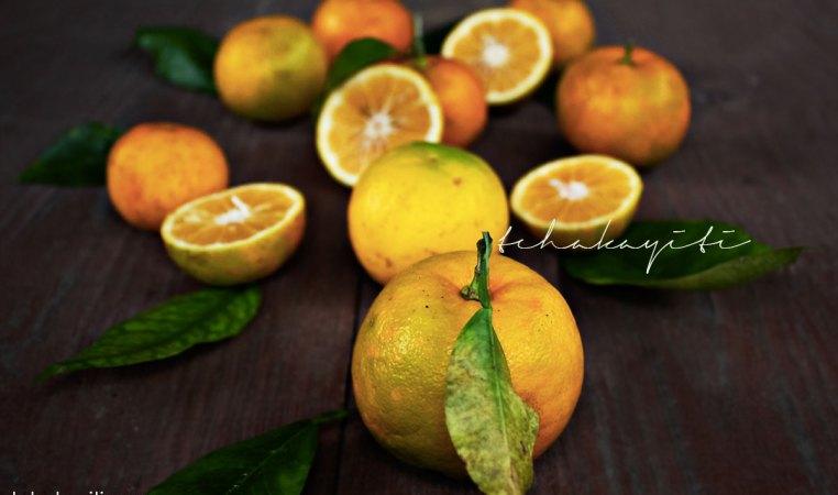 Sour oranges, key ingredient in Haiti's cooking. | tchakayiti.com