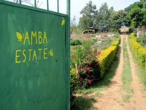 Welcome to Amba Estate, Sri Lanka