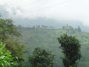 Rajiv jungpana2