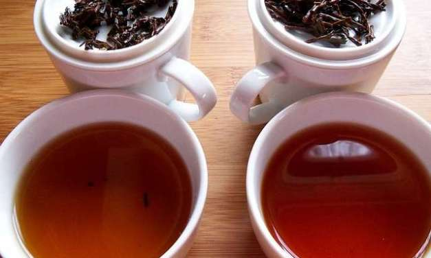 Tea 101: Which Tea Should I Drink?