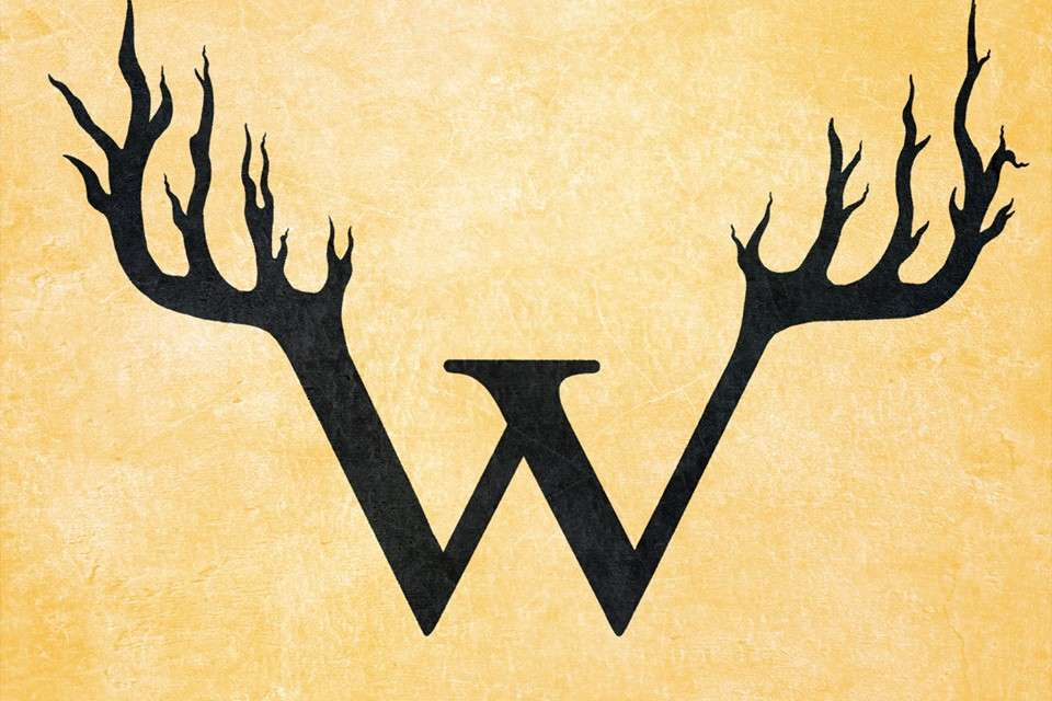 An Interview with Sky White of Wendigo Tea Company