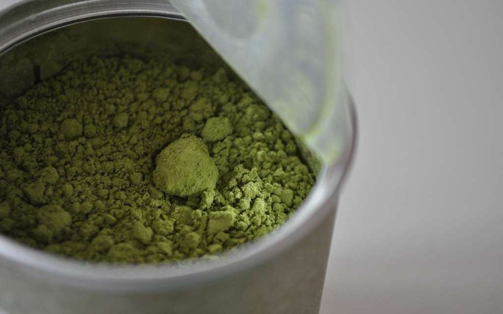 First Experiences with Matcha