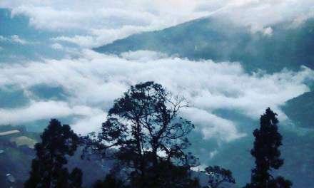 Darjeeling Tea Hills