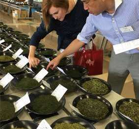 Behind the Scenes at the Tea Auction