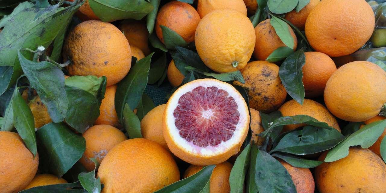 Tea and citrus