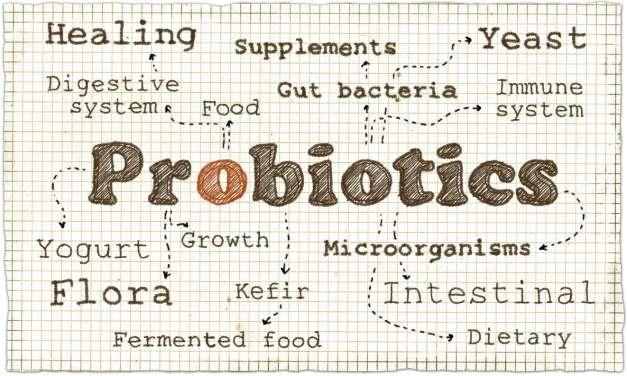 Probiotic tea