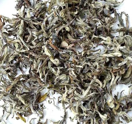 Tea Culture: A Blog Anniversary Retrospective
