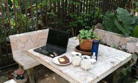 Some Intermediate-Level Ideas About Tea – Part 2