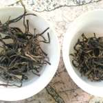 Phongsaly Laos Sheng and Black Tea Reviews – Part 1