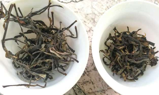 Phongsaly Laos Sheng and Black Tea Reviews – Part 1
