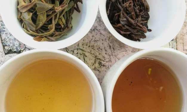Phongsaly Laos Sheng and Black Tea Reviews – Part 2