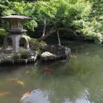 Following the Harvest, Second Installment – Highlights of the Tea Tour of Japan 2019