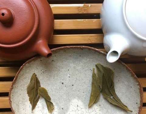 Wild Organic Tea – Second Installment