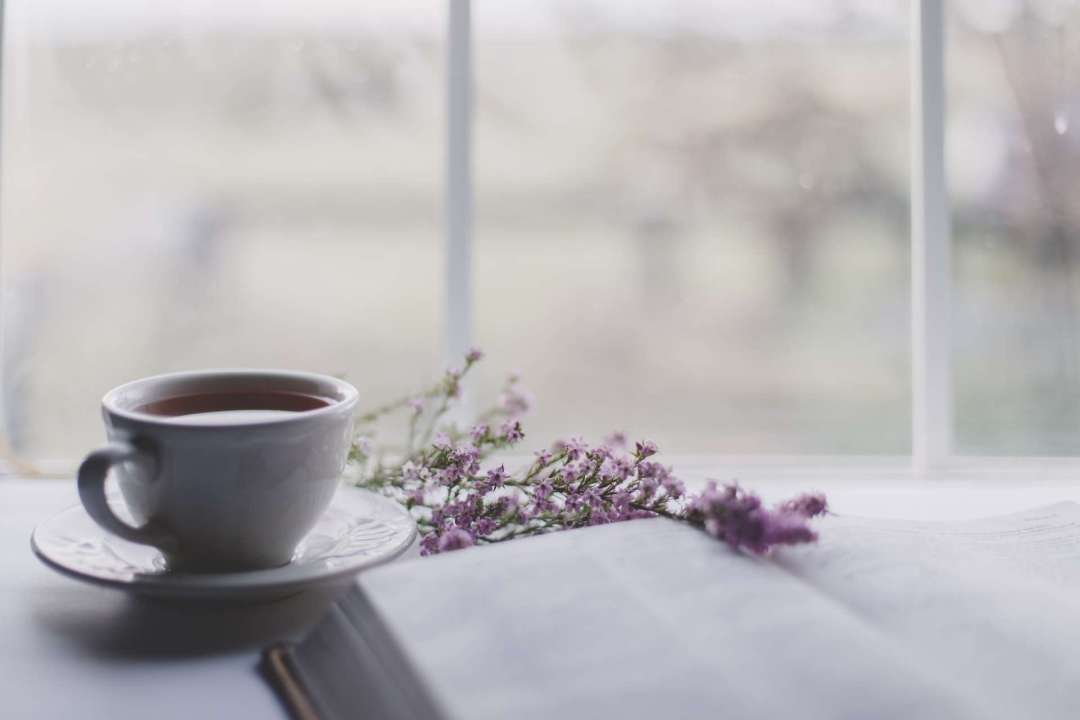 Room Environment Affecting Tea Quality - Photo of cup of tea near a book and open window
