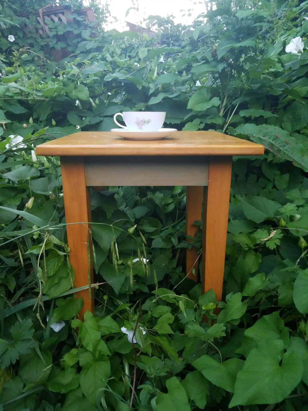 A tea cup and saucer sit on a wooden table in a thicket of vegetation, expressing independence
