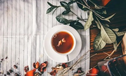 Finding The Perfect Teas For Your Daily Workout Routine