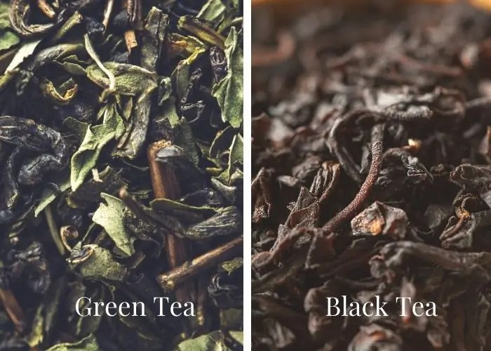 Green and black tea leaves in side by side comparison