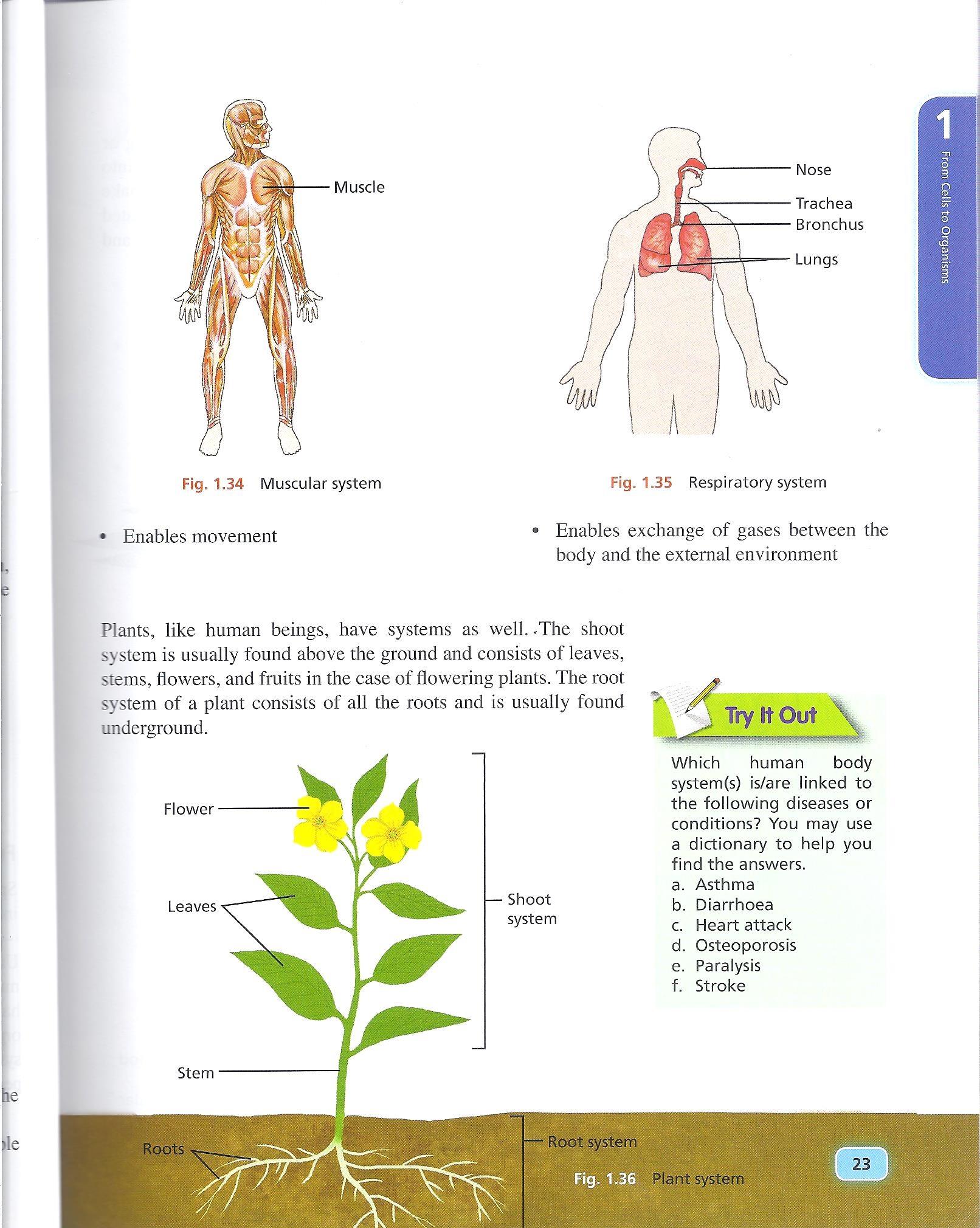 Eic Worksheet 7 8