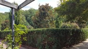 tct caterers Brookside Gardens 22 - tct-caterers-Brookside-Gardens-22
