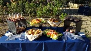 tct caterers Brookside Gardens 32 - tct-caterers-Brookside-Gardens-32