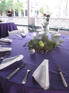 tct caterers Glen Echo 73 - tct-caterers-Glen-Echo-73