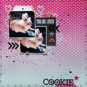 SannaLippert_cookie