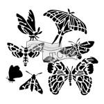 TCW - Mini Graceful Moths