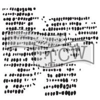 tcw619-corncob-etching