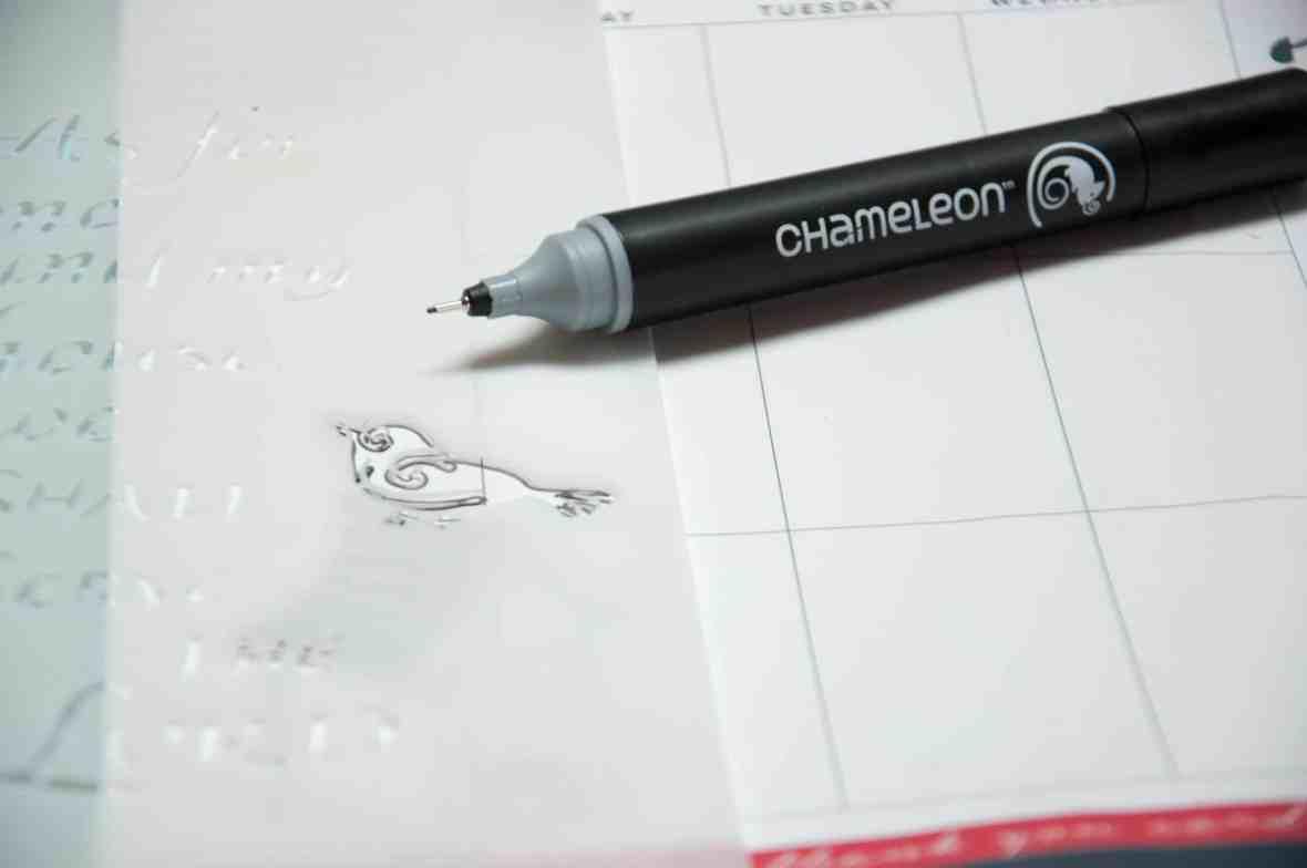CherylBoglioli_TCW_Chameleon (4 of 9)