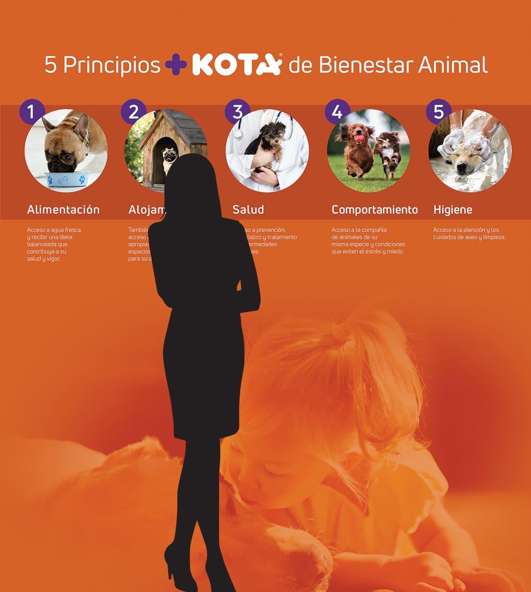 Mural Bienestar +KOTA TD2 Branding