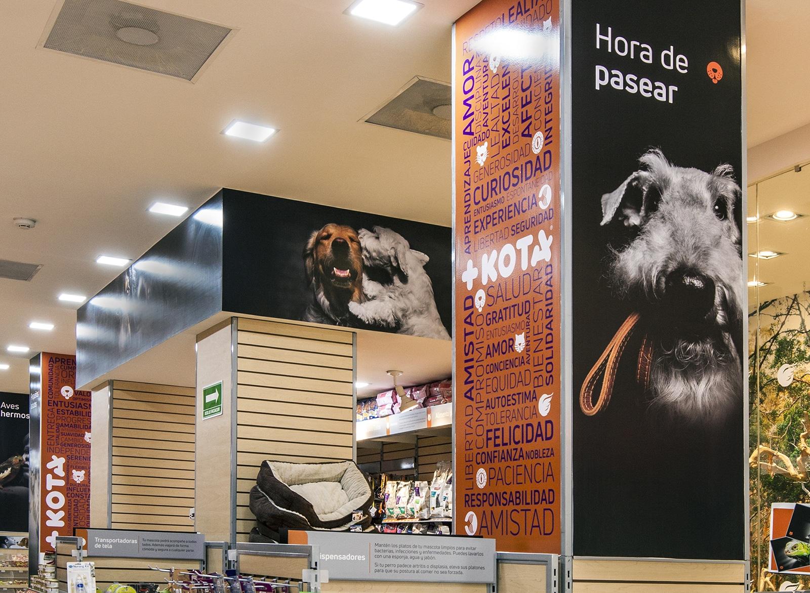 Interior +KOTA Condesa