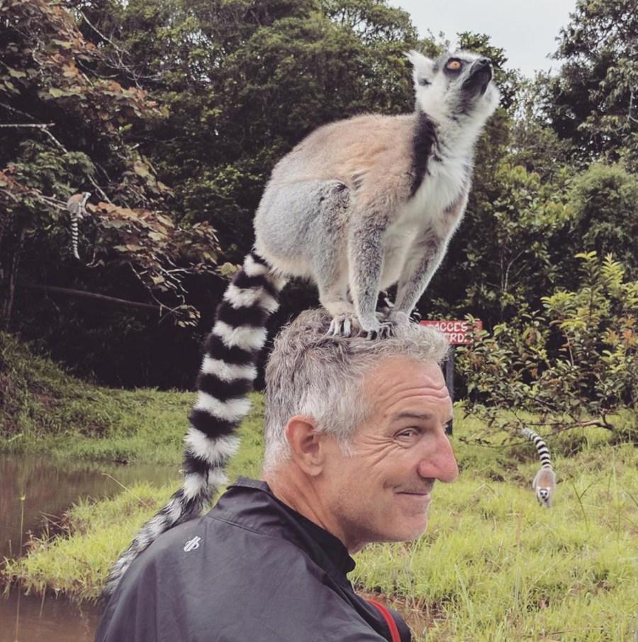 Lemur Head - TDA Global Cycling Blogs: Staff Picks for 2018