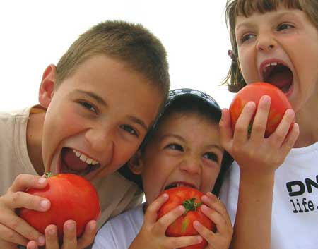 Chicos comiendo tomates