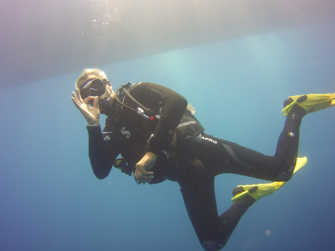 Zenobia diving