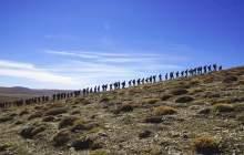 Yaz Yürüyüş Liderliği Kursu – Aydın Başvuruları